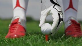 Den kvinnliga golfspelaren sätter bollen på utslagsplatsen stock video