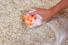 Den kvinnliga handen gör ren mattan Royaltyfri Foto