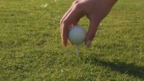 Den kvinnliga handen satte golfboll på utslagsplats stock video