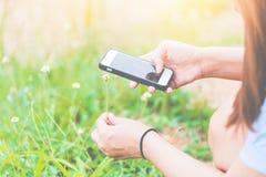 Den kvinnliga handen tar bilder av gula blommor med den smarta telefonen för mobilen På bakgrunden av gula blommor och grönt gräs Royaltyfria Bilder