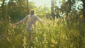 Den kvinnliga handen trycker på långa stammar av gräs i guld- strålar av solen stock video