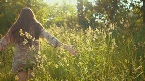 Den kvinnliga handen trycker på långa stammar av gräs i guld- strålar av solen lager videofilmer
