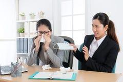 Den kvinnliga kontorsarbetaren fångar den kalla blåsa näsan arkivfoton