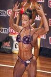 Den kvinnliga kroppsbyggaren i dubbel biceps poserar och den purpurfärgade bikinin Royaltyfri Fotografi