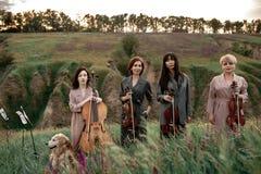 Den kvinnliga musikaliska kvartetten med fioler och violoncellen förbereder sig att spela på blomningängen Royaltyfria Bilder