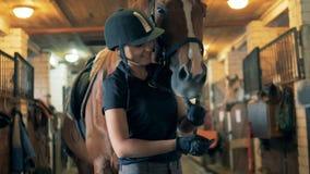 Den kvinnliga ryttaren spelar med en häst, slut upp En kvinna och en häst står i ett specialt stall som spelar stock video