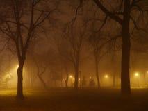 Den läskiga dimmiga natten i stad parkerar Fotografering för Bildbyråer
