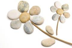 den lätta blomman gjorde pebbles Arkivbilder