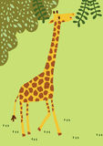 Den långa halsgiraffet har roligt som reser runt om djup skog som det breda djuret av africa blir till den cuty tecknade filmen Arkivfoton