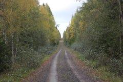 Den långa vägen Arkivbild