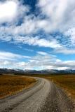 Den långa vägen i Island Arkivfoto