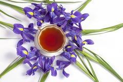 Den lökformiga irins för Violet Irises xiphium, sibirica med kopp te på vit bakgrund med utrymme för text Bästa sikt, lägenhet Ho Arkivbild