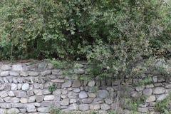Den lösa naturen bak stenar väggen royaltyfri fotografi