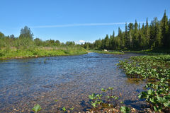 Den lösa nordliga floden Royaltyfri Bild