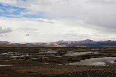 Den lösa röven för sjö i Tibet Arkivbild