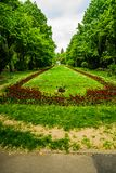 Den l?nga gr?nden med gr?na tr?d, gr?s och blommande tulpan och f?rg?tmigejblommor i Cismigiu parkerar, Bucharest, Rum?nien royaltyfri foto