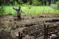 Den lantliga fågelskrämman skyddar en trädgård i lantliga Vietnam Royaltyfri Bild