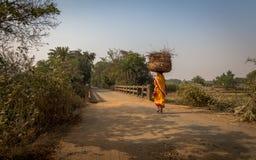Den lantliga indiska kvinnan bär trä på henne går mot bränning till hennes by i Bankura Royaltyfri Bild