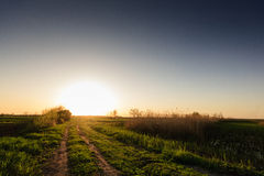 Den lantliga vägen för in i solnedgång Royaltyfri Bild