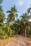 Den lantliga vägen i gömma i handflatan skogar av den Koh Chang ön, Thailand Arkivbild
