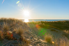 Den Lens signalljuset som solen brister över havet och sand Arkivfoton