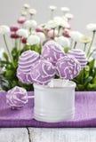 Den lila kakan poppar i den vita keramiska kruset. Vita och rosa tusenskönor Royaltyfria Foton