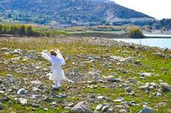 Den lilla ängelflickan kom från himmel Royaltyfri Foto