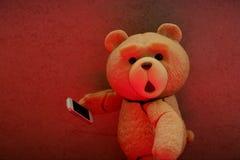 Den lilla björnen ser din framsida royaltyfri foto