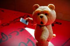 Den lilla björnen ser fotografering för bildbyråer
