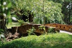 Den lilla bron Arkivfoto