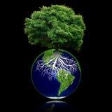 Den lilla ecoplaneten med trädet och rotar på den värld för leaf för green för begreppsdroppjord Arkivbild