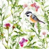 Den lilla fågeln i våräng blommar, fjärilar Upprepat mönstra vattenfärg Arkivbild