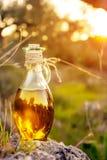 Den lilla flaskan med olivolja med linssignalljuset och solen tänder Royaltyfri Bild