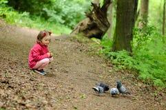 Den lilla flickan matar stads- duvor duvor i parkera Arkivbild