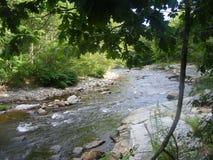 Den lilla floden med vaggar arkivfoto