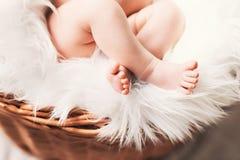 Den lilla foten av behandla som ett barn att sova i vide- korg Arkivfoton