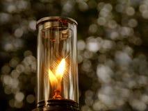 Den lilla gaslampan bilden har ett bokehträd som bakgrund Tappningfärgbild arkivbilder