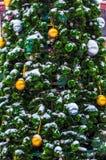 Den lilla gran-träd förkylningen i vintern Royaltyfri Bild