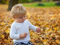 Den lilla litet barnpojken som spelar i höst, parkerar Royaltyfri Foto