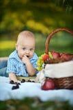Den lilla lyckliga pojken har en picknick Royaltyfria Bilder