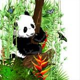 Den lilla pandan på trädet stock illustrationer