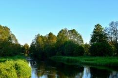 Den lilla smala floden på bakgrunden av sagolikt djurliv bland skogområdet av träd, sörjer och lövfällande träd arkivfoto