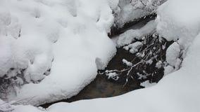 Den lilla strömmen i vinterskog kör till och med fluffiga drivor arkivfilmer