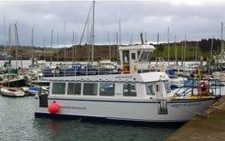 Den lilla turist- kryssaren som anden av Kinsale band upp i hamnen på Kinsale i ståndsmässig kork på sydkusten av Irland Arkivbild