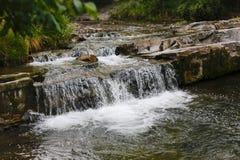 Den lilla vattenfallet applåderar i Slovakien naturlig skönhet Royaltyfri Fotografi