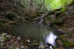 Den lilla vattenfallet och sjön på Borzestien strömmar att gå upp till den Borzesti klyftan Arkivfoto