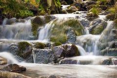 Den lilla vattenfallet parkerar in med härligt slätar vatten Liten wat Arkivfoto