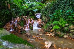 Den lilla vattenfallet parkerar in med mossa Royaltyfri Fotografi