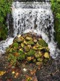 Den lilla vattenfallet parkerar offentligt Fotografering för Bildbyråer