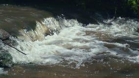 Den lilla vattenfallet som över applåderar, vaggar i tropisk Forest Slow rörelse lager videofilmer